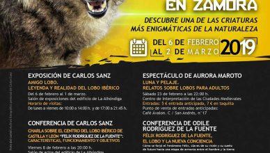Primeras Jornadas del Lobo Ibérico en Zamora.