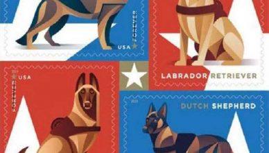 El Servicio Postal de Correos de Estados Unidos quiere honrar a los valientes y leales perros de trabajo militares con esta colección de 20 sellos.