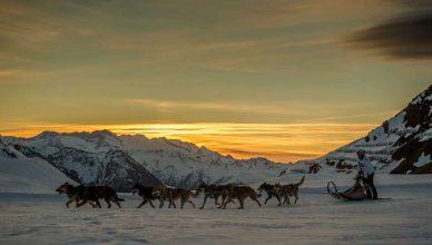 Snow Race by Gos Àrtic, vívela etapa a etapa