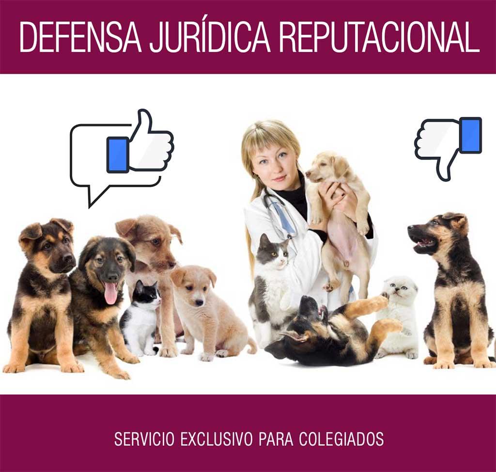 Colvema ofrece un servicio gratuito de defensa y reclamación por actos contra la reputación profesional de sus colegiados en medios y online.