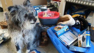 La protectora Animales sin Techo de Biescas recibe más de 300 kilos en productos Trixie.