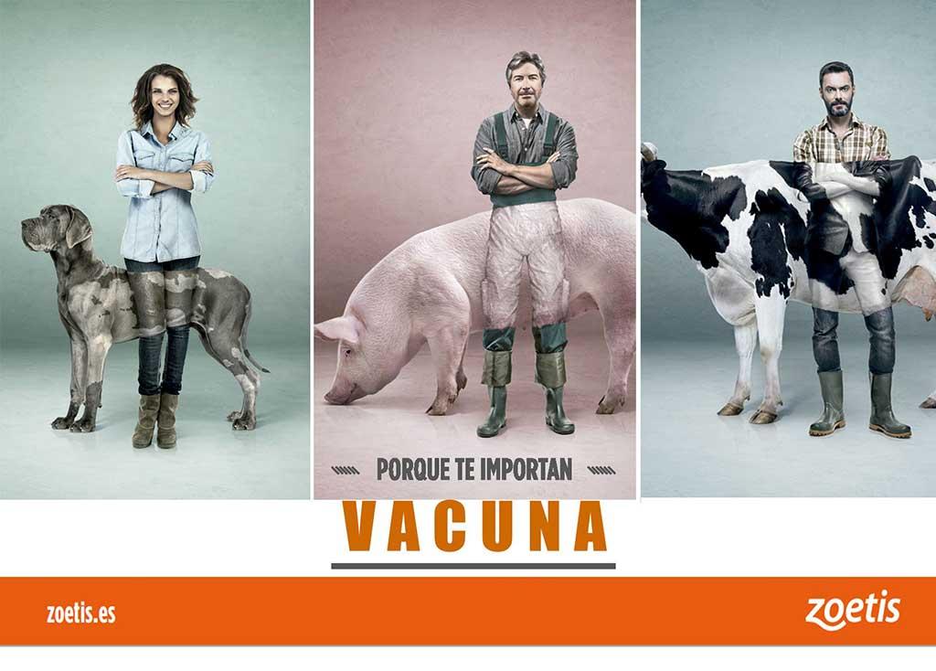 Zoetis conciencia sobre la importancia de la vacunación de los animales y su impacto en la salud pública.