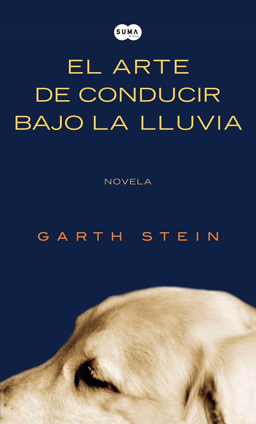 Libro de Gath Stein.