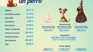 Tener perro, hasta un 11,43% más caro que en 2018.
