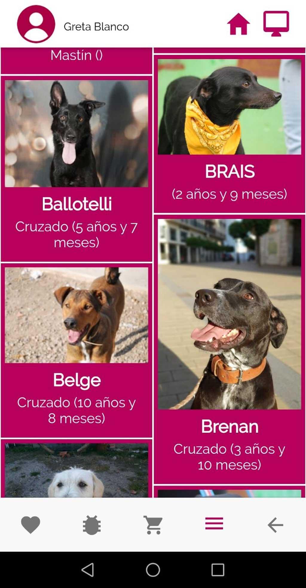 Animalove, app solidaria con las protectoras de animales