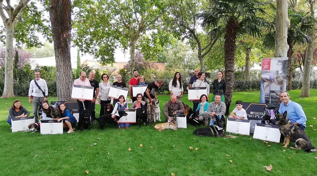 Beca para 25 perros jubilados de Héroes de 4 Patas.
