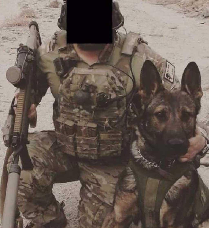Este es el perro que ayudo a los Delta Force en la operación contra Al Bagdadi