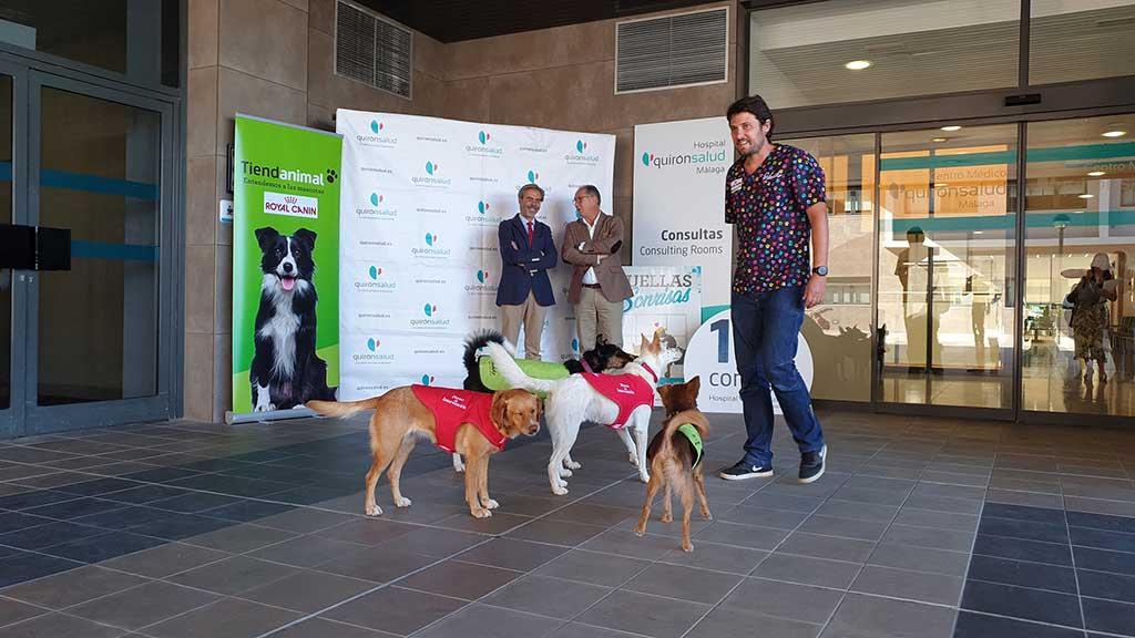 """""""Huellas y Sonrisas"""" llevará perros de asistencia a Quirónsalud Málaga."""