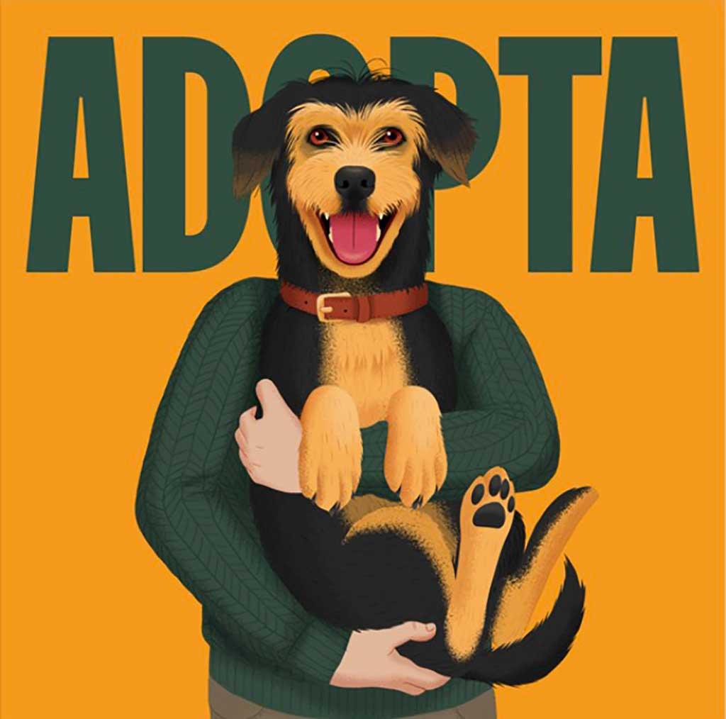 Adopción Animal, nueva web y campaña de Madrid Salud.