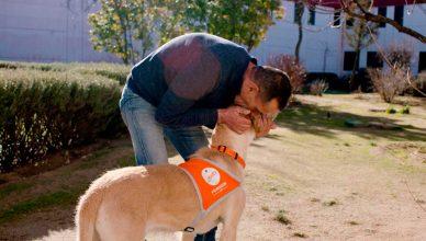 El Centro Penitenciario de Madrid VI (Aranjuez) se suma a la terapia asistida con animales