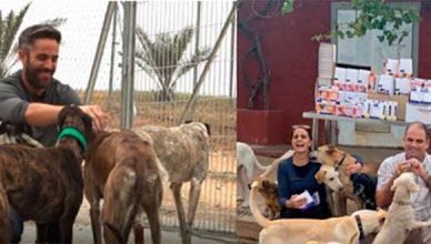 Virbac dona una tonelada de alimentos a la asociación Animal Rescue España y productos antiparasitarios a asociaciones de todo el país
