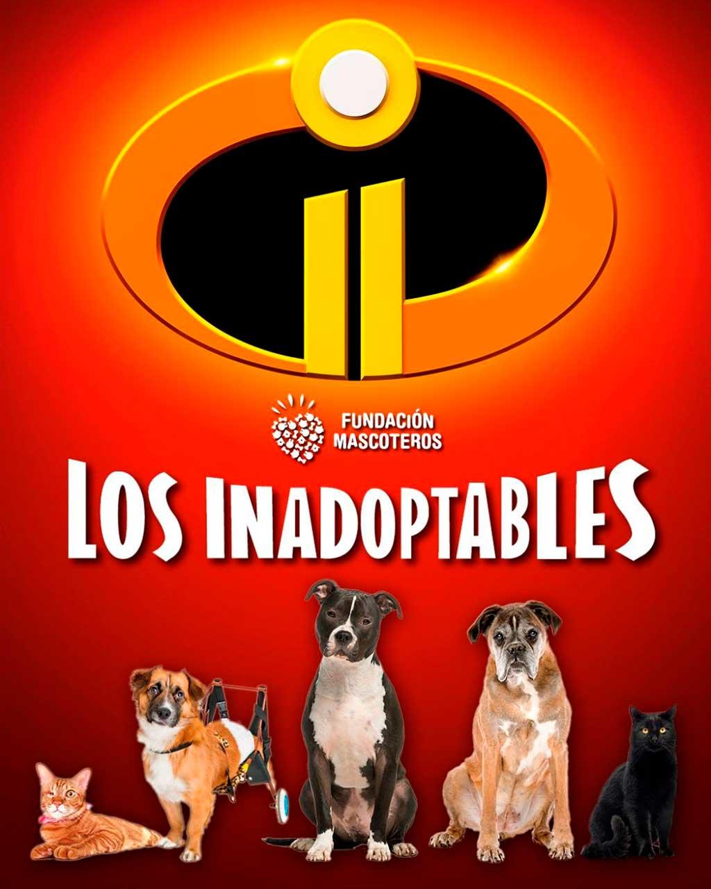 'Fundación Mascoteros' y 'Como el perro y el Gato' lanzan la campaña #SoyInadoptable.
