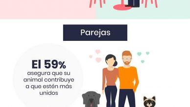 Humanos enamorados, San Valentín y las mascotas.
