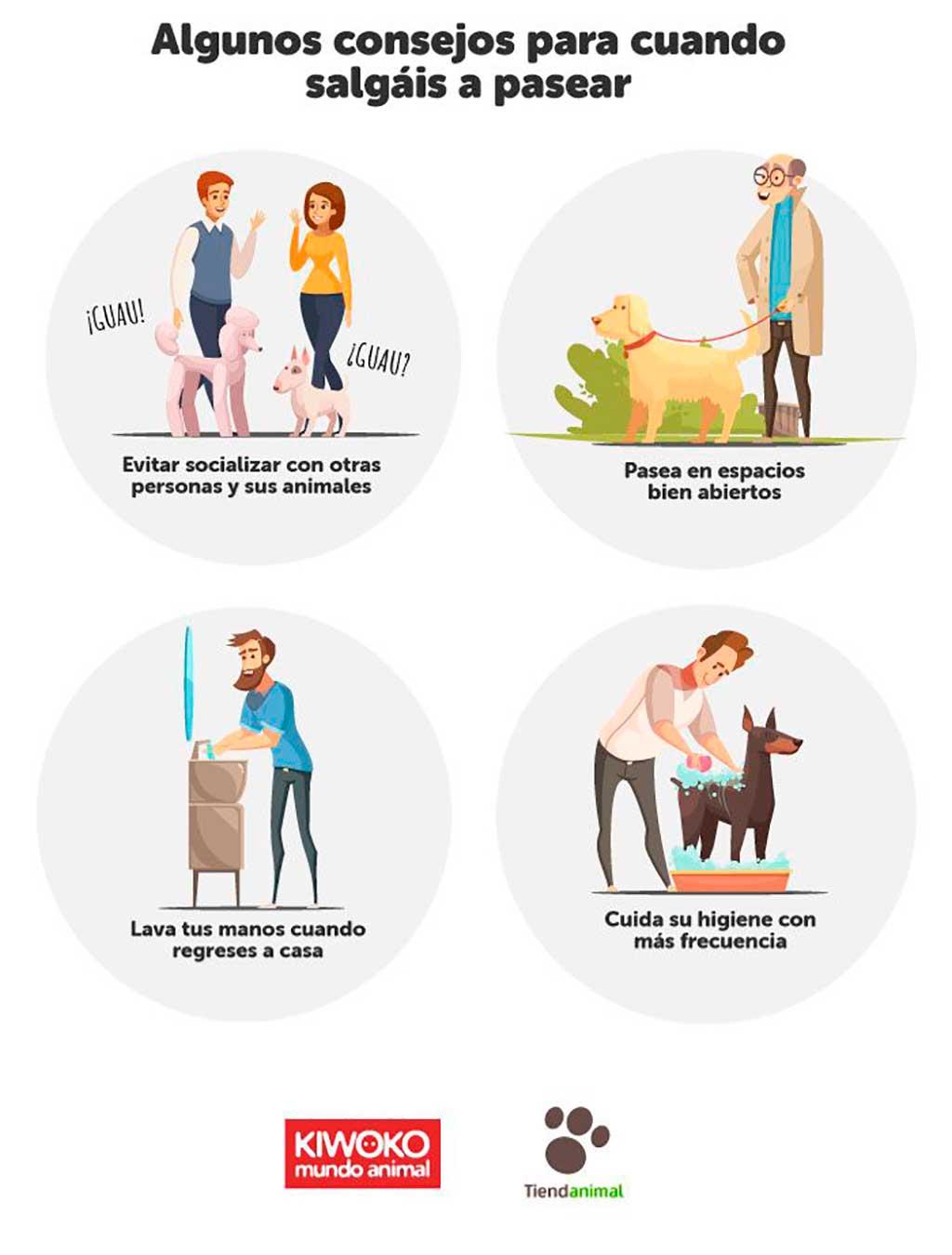 Coronavirus Covid-19 y perros, lo que tienes que saber.