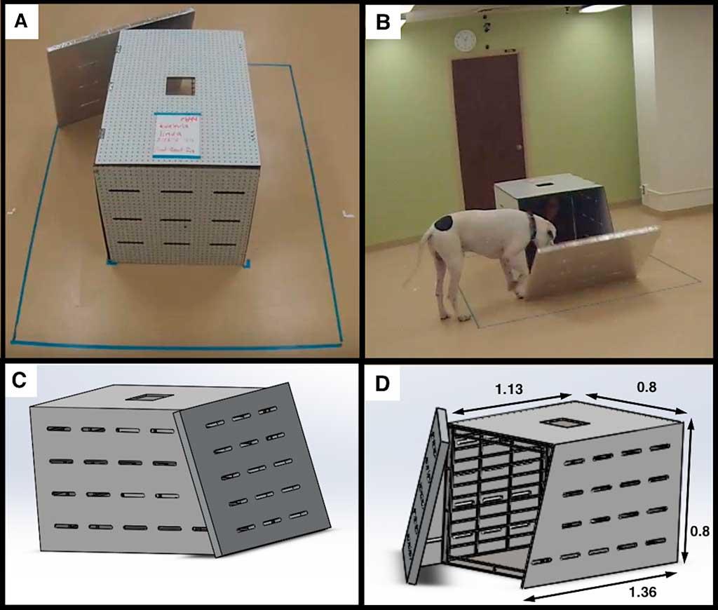"""El comportamiento """"prosocial"""" del perro hacia el hombre, en un interesante estudio."""