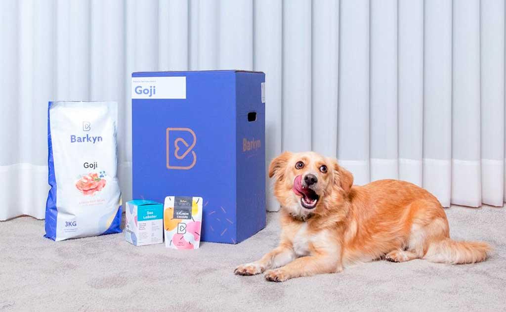 Barkyn, alimentación canina a la medida de cada perro, y mucho más