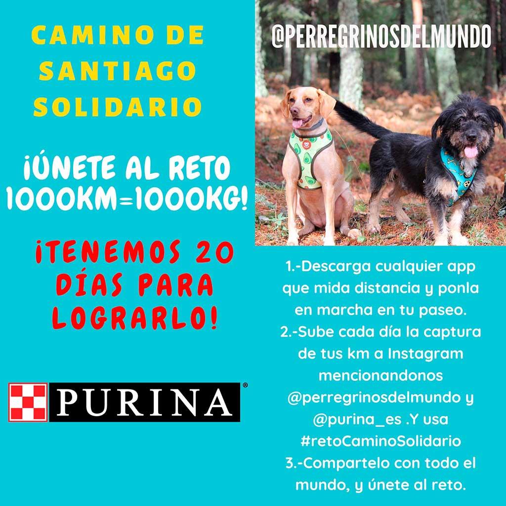 Purina y PeRRegrinos del Mundo lanzan la iniciativa #retoCaminoSolidario.