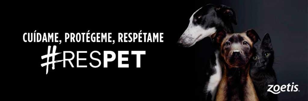 #RESPET llega a las redes sociales.