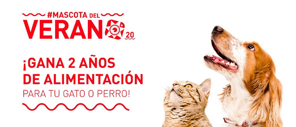 #Mascotadelverano20 seleccionará las mejores fotografías veraniegas de gato y de perro.