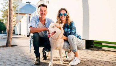 Cuando una pareja se divocia y hay animales en la vivienda ¿quién se queda con la mascota?