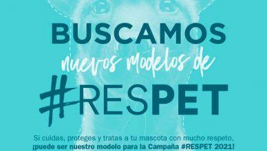 #RESPET busca protagonistas para su campaña 2021