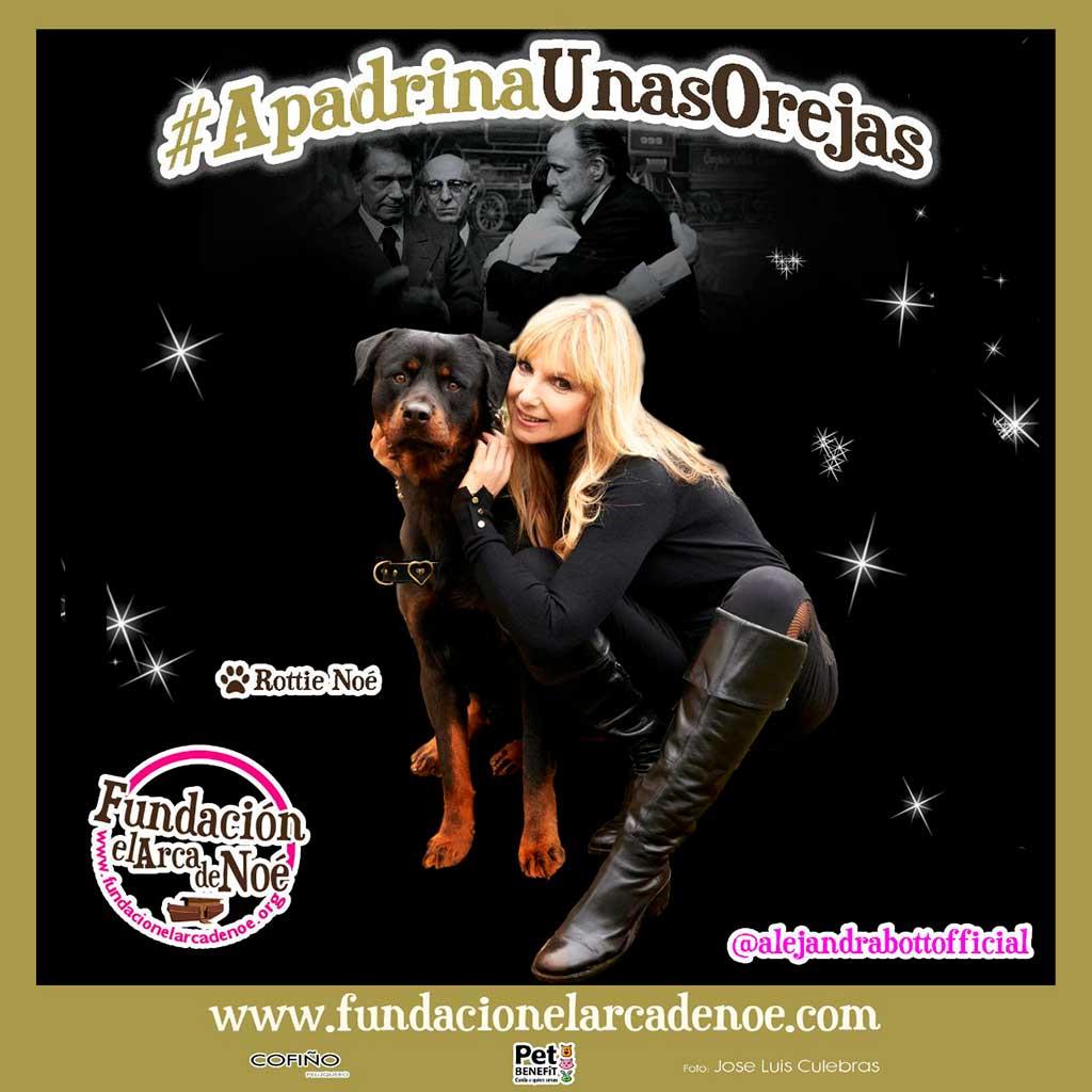 #ApadrinaUnasOrejas, campaña abanderada por Alejandra Botto y la Fundación El Arca de Noé.