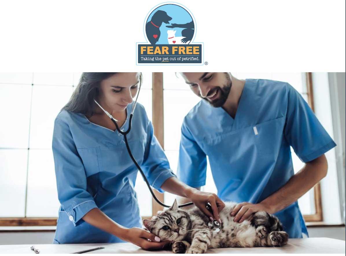 Prevenir y aliviar el miedo, la ansiedad y el estrés en las mascotas.