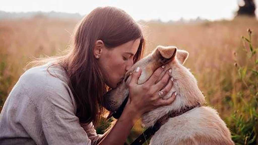 ¿Se puede querer a un perro como a una persona?
