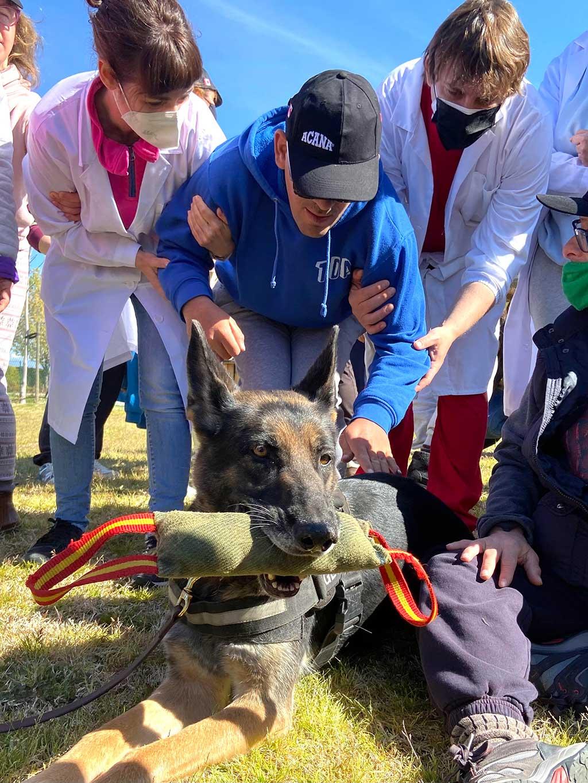 Los perros entran en el centro ocupacional de Jardines de España.