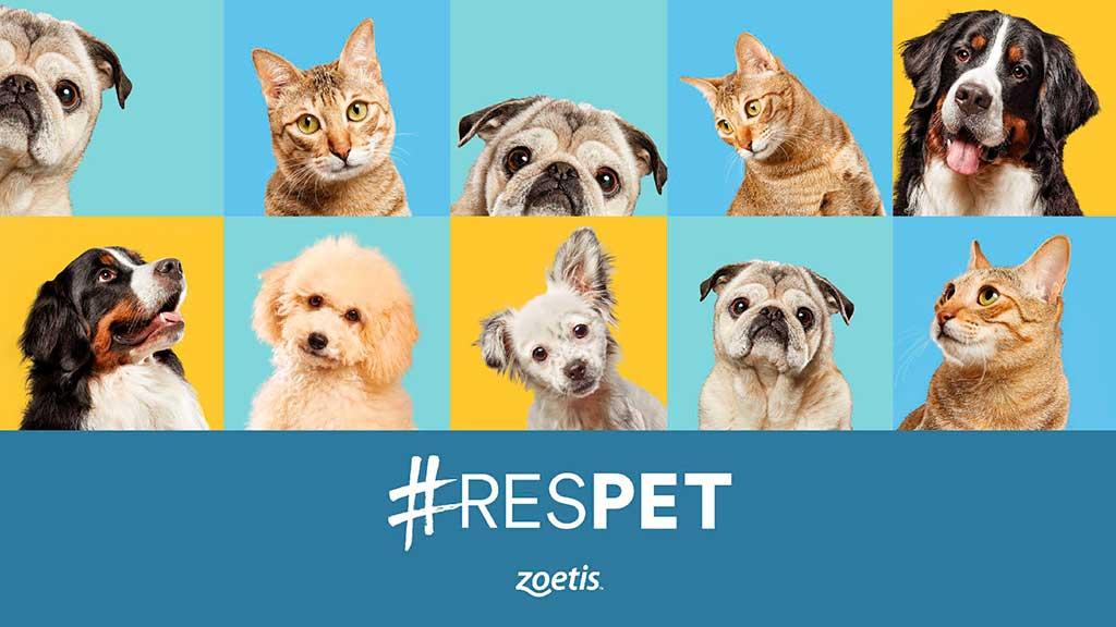 Anita, Jako, Lokyta y Dorm: historias reales e inspiradoras reflejo de #RESPET.