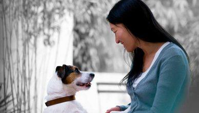 Está demostrado: el vínculo humano-animal es beneficioso para la salud.