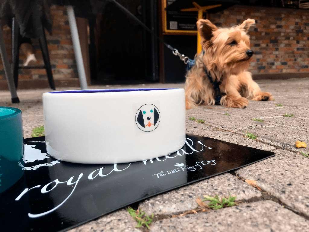 Restaurantes y terrazas de la Comunidad Valenciana comienzan a incorporar un menú para perros en su carta.