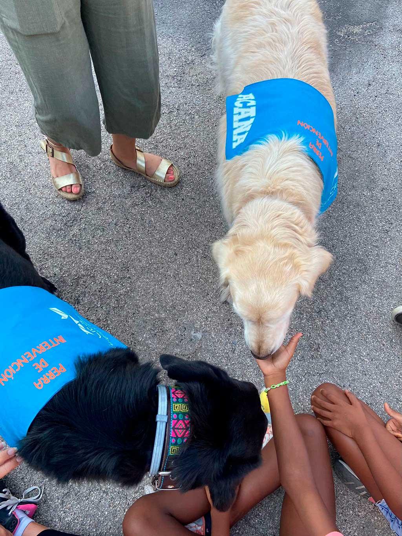 Acana inicia una colaboración con CITA Terapias y Animales.
