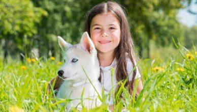 Nuevo test genético para prevenir enfermedades en perros.